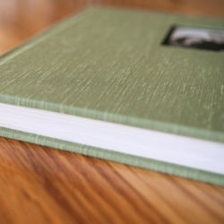 Wedding Albums by Baltimore and DC Photographer - Robin Shotola